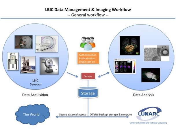Overview of LBICs data management